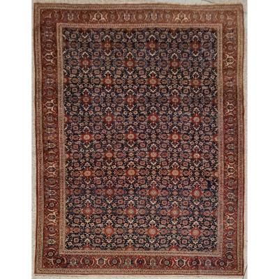 Teheran Carpet In Kork Wool - Iran Around 1930