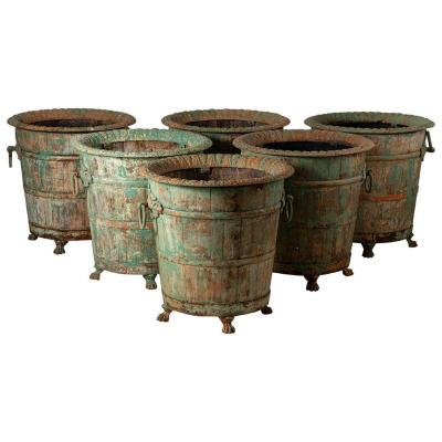 Set Of Six Orange Tree Planters, France, Late 19th Century, Sold By Pair
