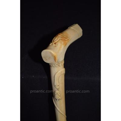 Cane Old Ivory Knob End 19th Century