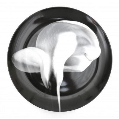 Assiette En Porcelaine, Photo De Robert Mapplethorpe, Pour Swid Powell, Calla Lily, 1983