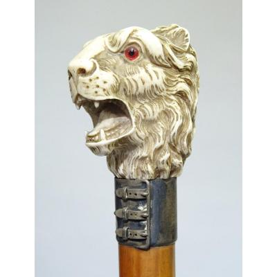 Cane with ivory handle representing a lion&#39;s head.<br /> <br /> Metal ring shaped like a belt.<br /> <br /> Dimension: length of 90 cm.<br /> <br /> Italy dating from the late XIX century.