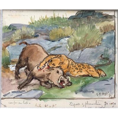 Georges-Frédéric Rötig (1873-1961) - Aquarelle signée - Léopard et phacochère