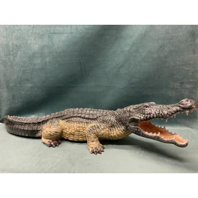 Crocodile en Barbotine.