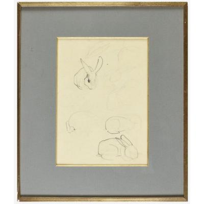 Study Of Rabbits, By Mathurin Meheut