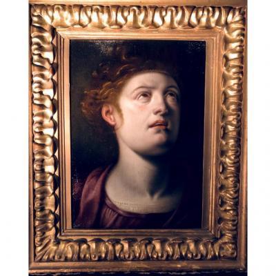Attribué à Frans Floris (1517-1570) Tête à l'antique sur panneau