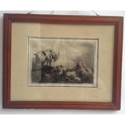 Attribué à Eugène Verboeckhoven, Chèvres Et Moutons, Pierre Noire, 27 X 19 Cm