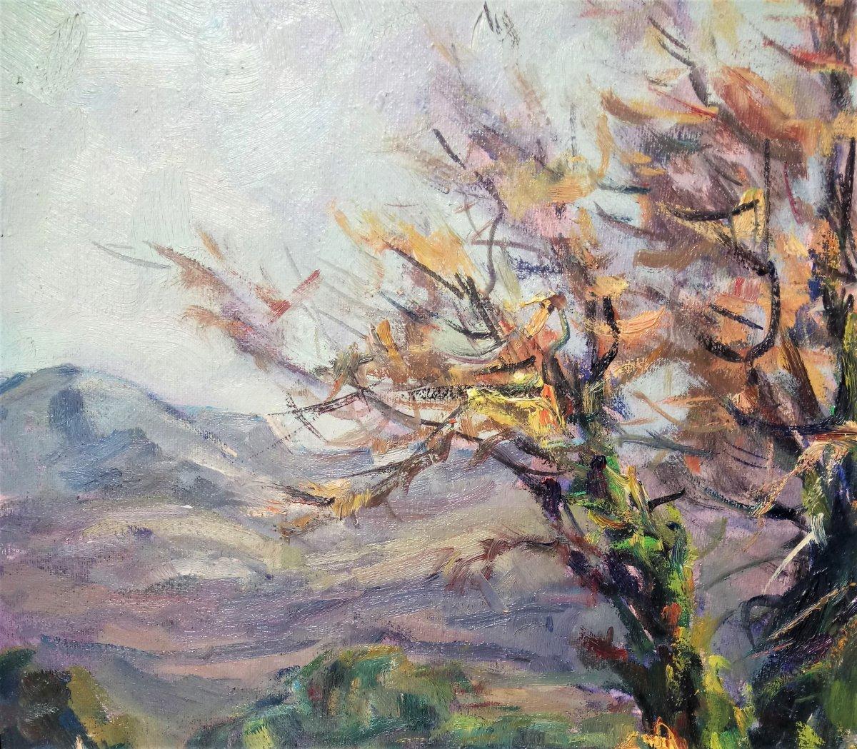 Sieyes. A (twentieth), Almond Blosooms, Oil On Canvas, With Frame-photo-4