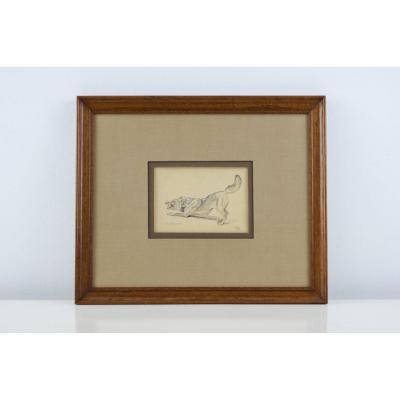 Wolf Drawing - Edouard Mérite
