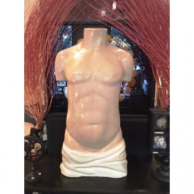 Buste Anatomique En Plâtre Et Papier Mâché 1940