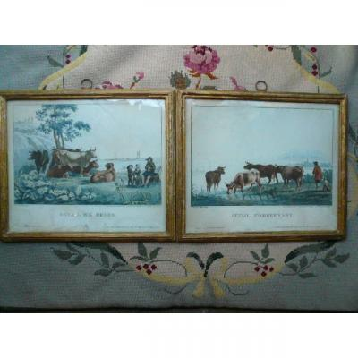 """Pair Of Period Color Engravings Early Nineteenth Century """"cattle Watering"""" And """"cattle"""
