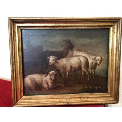 """Huile Sur Panneau """"moutons,belier Et Bouc Fin XVIIIeme"""