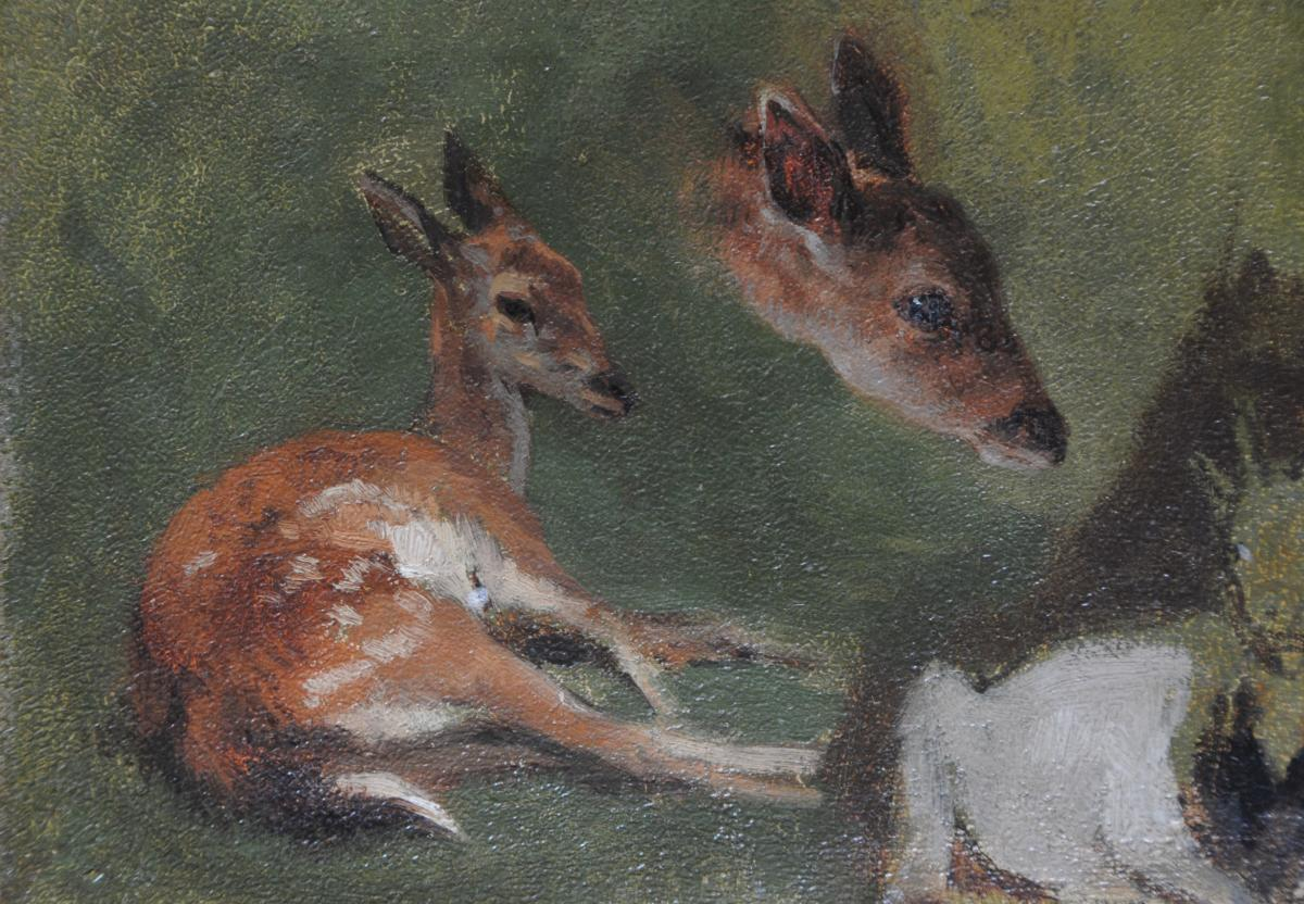 Fawn And Goat Study