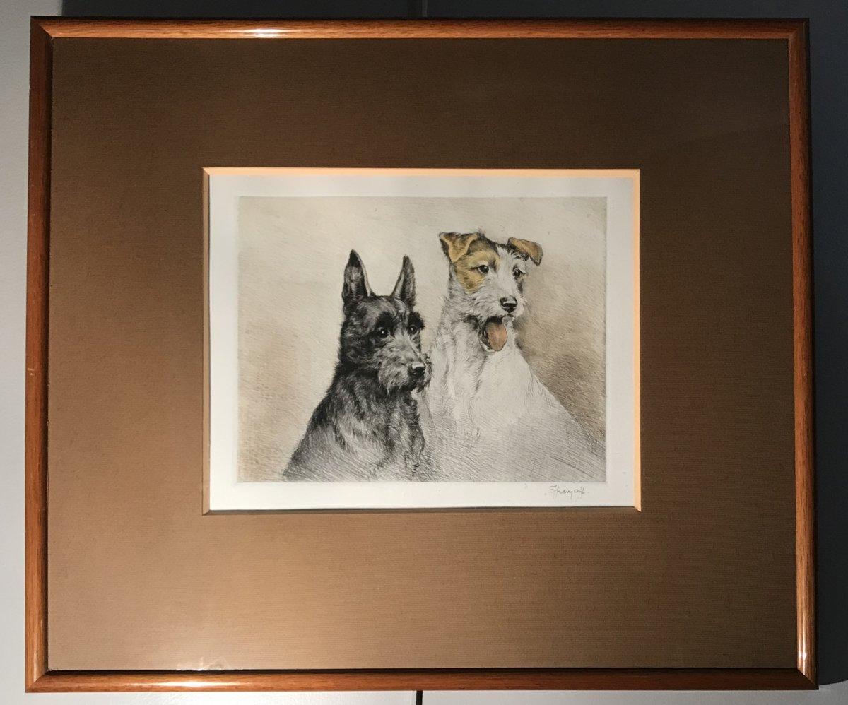 Eau-forte En Couleurs : Scottish Et Fox