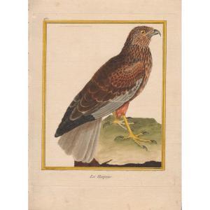 XVIIIth Engraving By Martinet: La Harpaye
