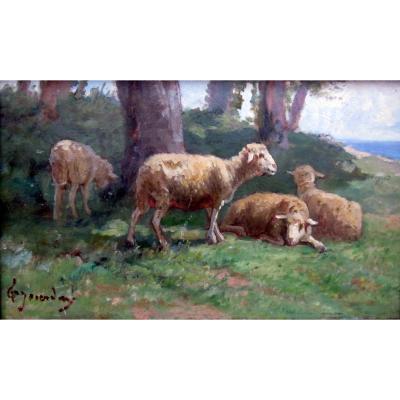 Théodore Jourdan (1833-1908) Moutons Au Repos