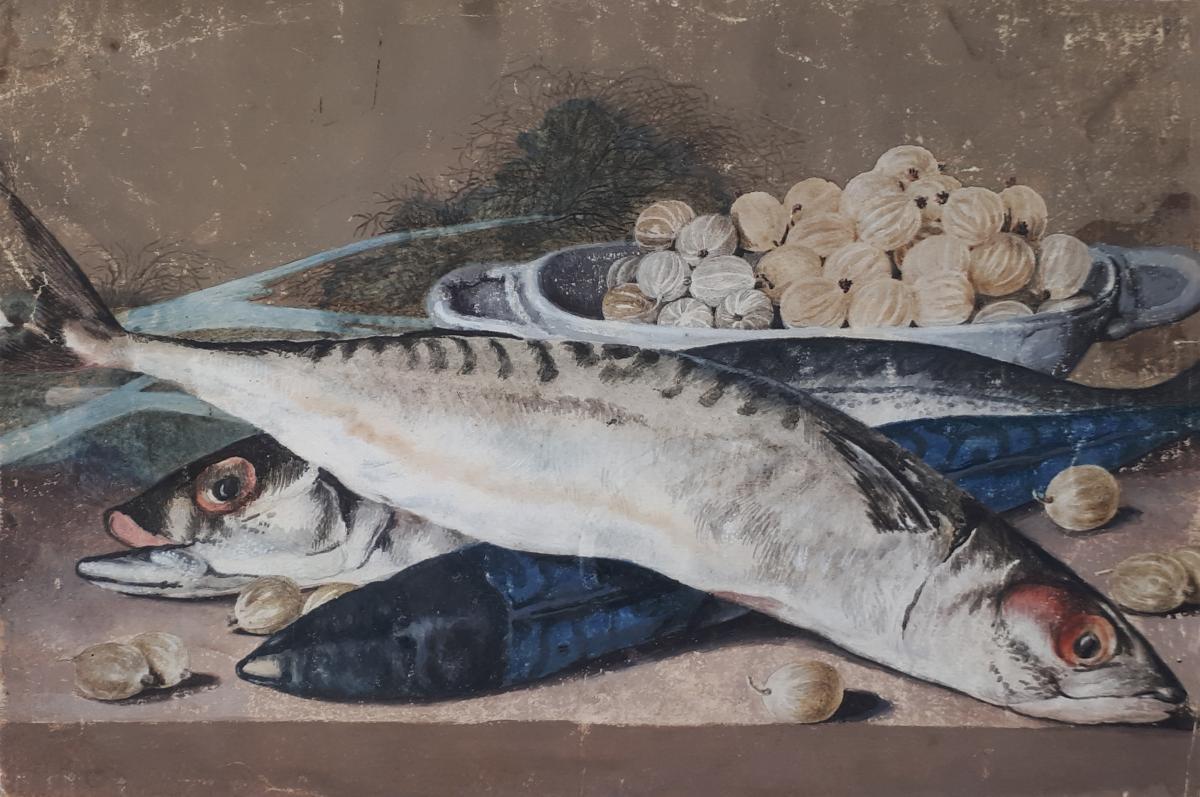 """""""Nature morte aux poissons"""" Dessin, Ecole Française 18e siècle, Gouache"""