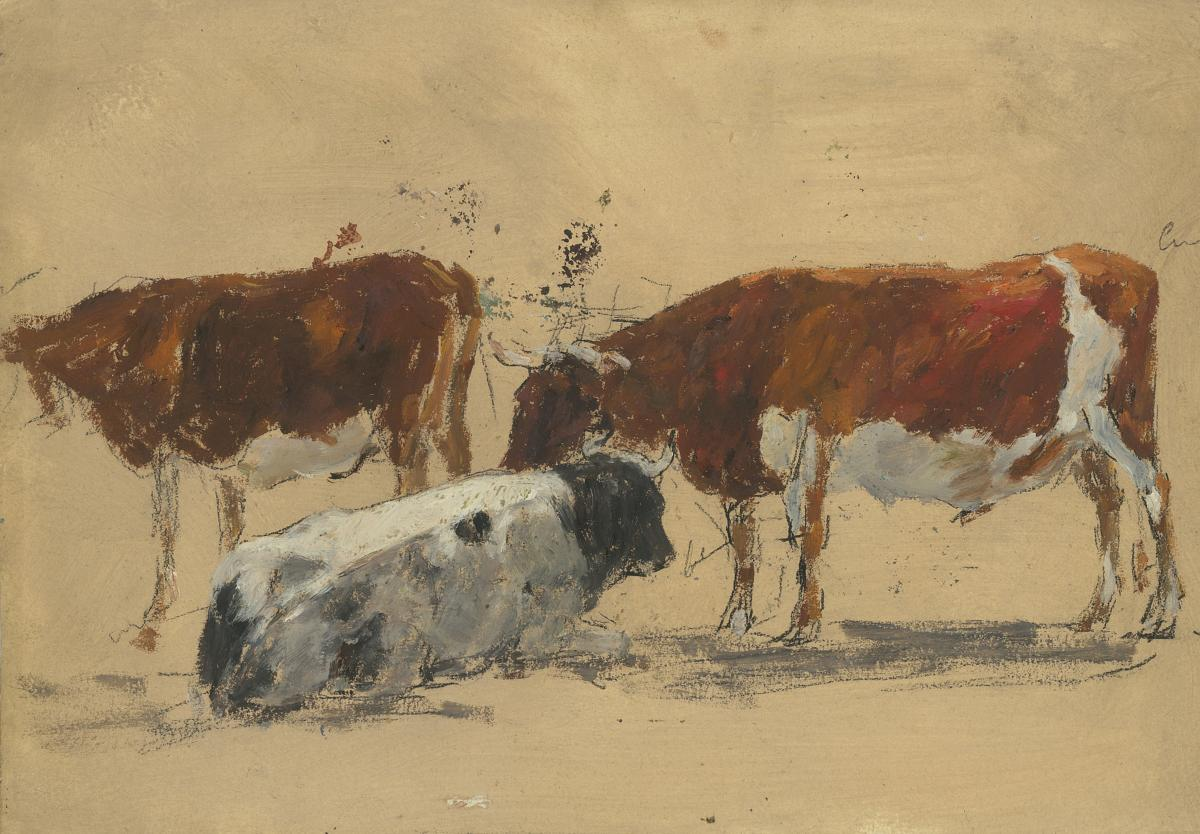 """""""study Of Cows"""" Boudin Eugene Attributed To, Drawing/oil On Paper On Black Pencil Lines"""