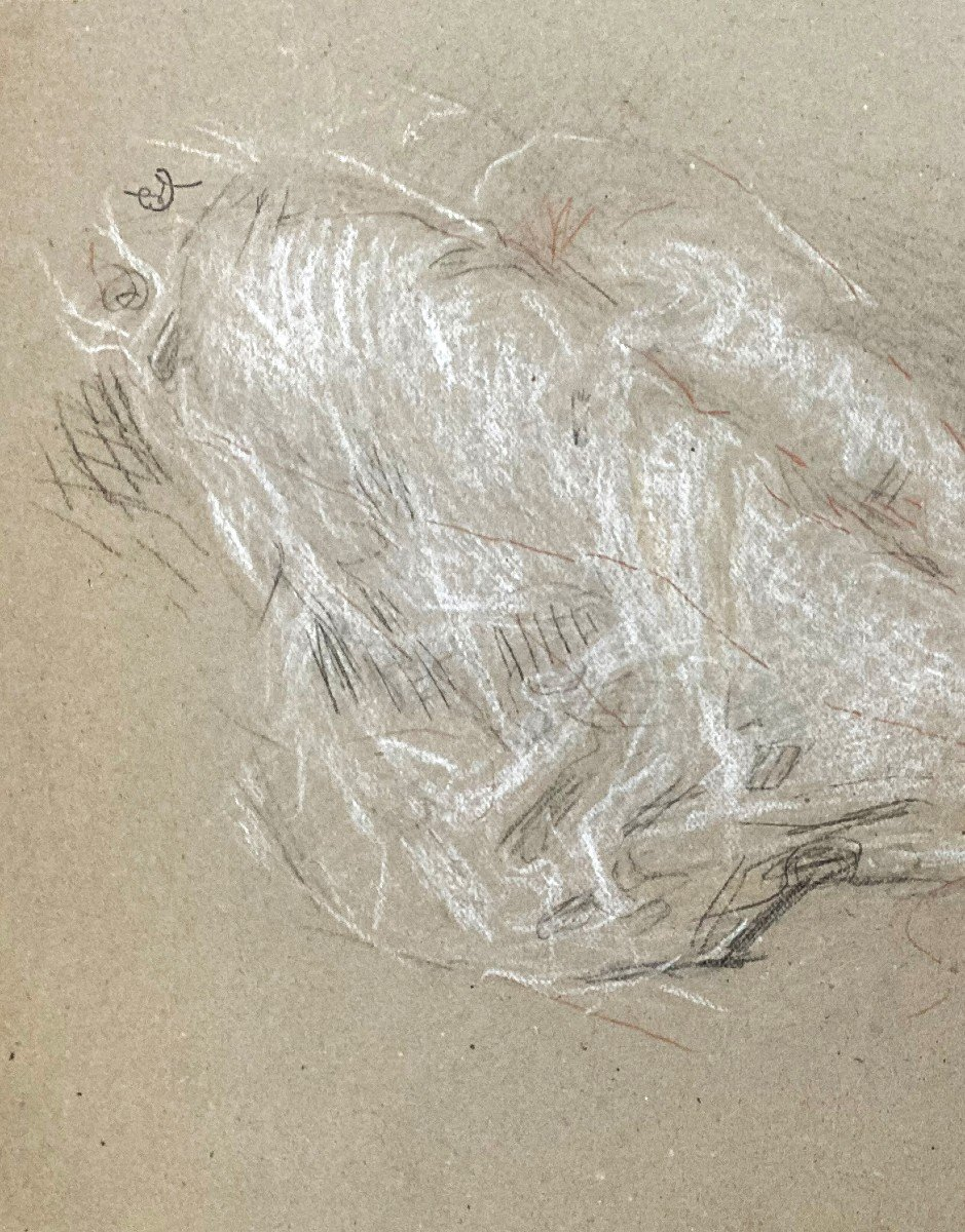 """Laurent Ernest (1859-1929) """"study Of Elongated Legs""""drawing/black Pencil,red Chalk,signed/stamp-photo-2"""