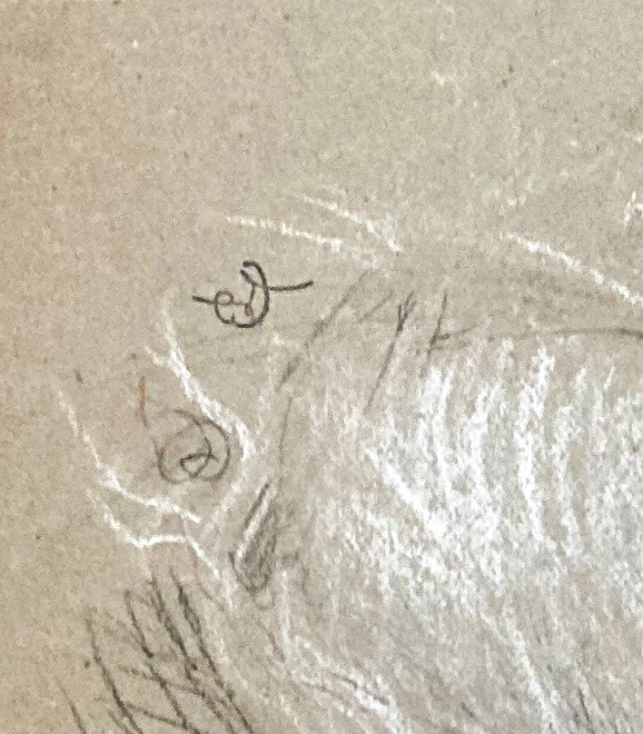 """Laurent Ernest (1859-1929) """"study Of Elongated Legs""""drawing/black Pencil,red Chalk,signed/stamp-photo-4"""