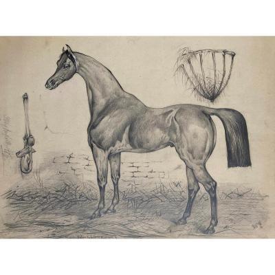 """ECOLE FRANCAISE 19E """"Un cheval"""" Dessin au crayon noir, annoté"""