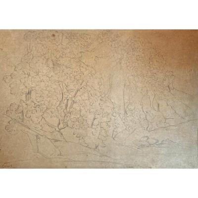 "COROT Jean Baptiste Camille (1796-1875)""Arbres et rochers""Dessin/Crayon noir,Cachet/Vente Corot"