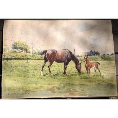 Anna Palm De Rosa (1859-1924) Horses In The Meadow, Watercolor, Painter From Sweden Stockholm