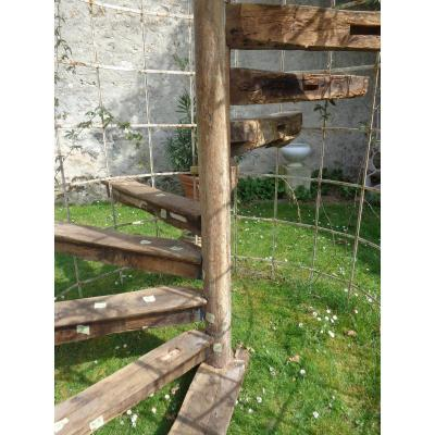 Escalier Hélicoidal a vis  XV- XVI ème En Chène