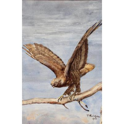 François Forichon, 1865-1952, Raptor Taking Flight, Large Drawing, 1913