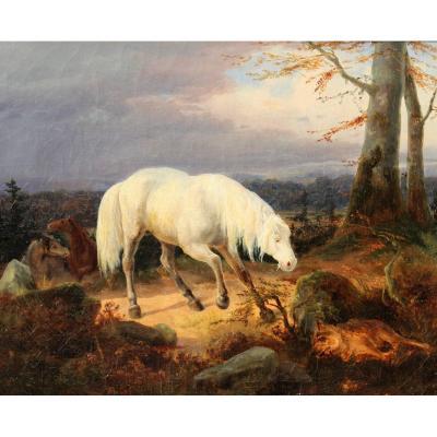James WARD (cercle de), 1769-1859, Cheval effrayé par un loup mort, tableau, vers 1850