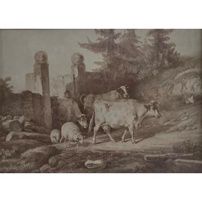 19th Century Lavis