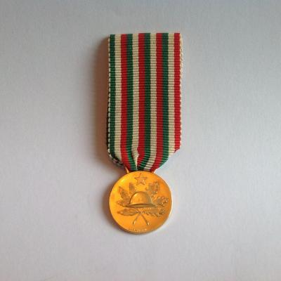 Commemorative Gold Military Medal Italy 1918-1968
