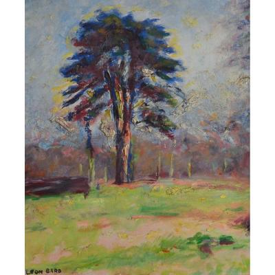 """GARD Léon (1901-1979) """"Cèdre dans le Parc des Bonshommes"""" Isle Adam Tulle Paris Hiver"""