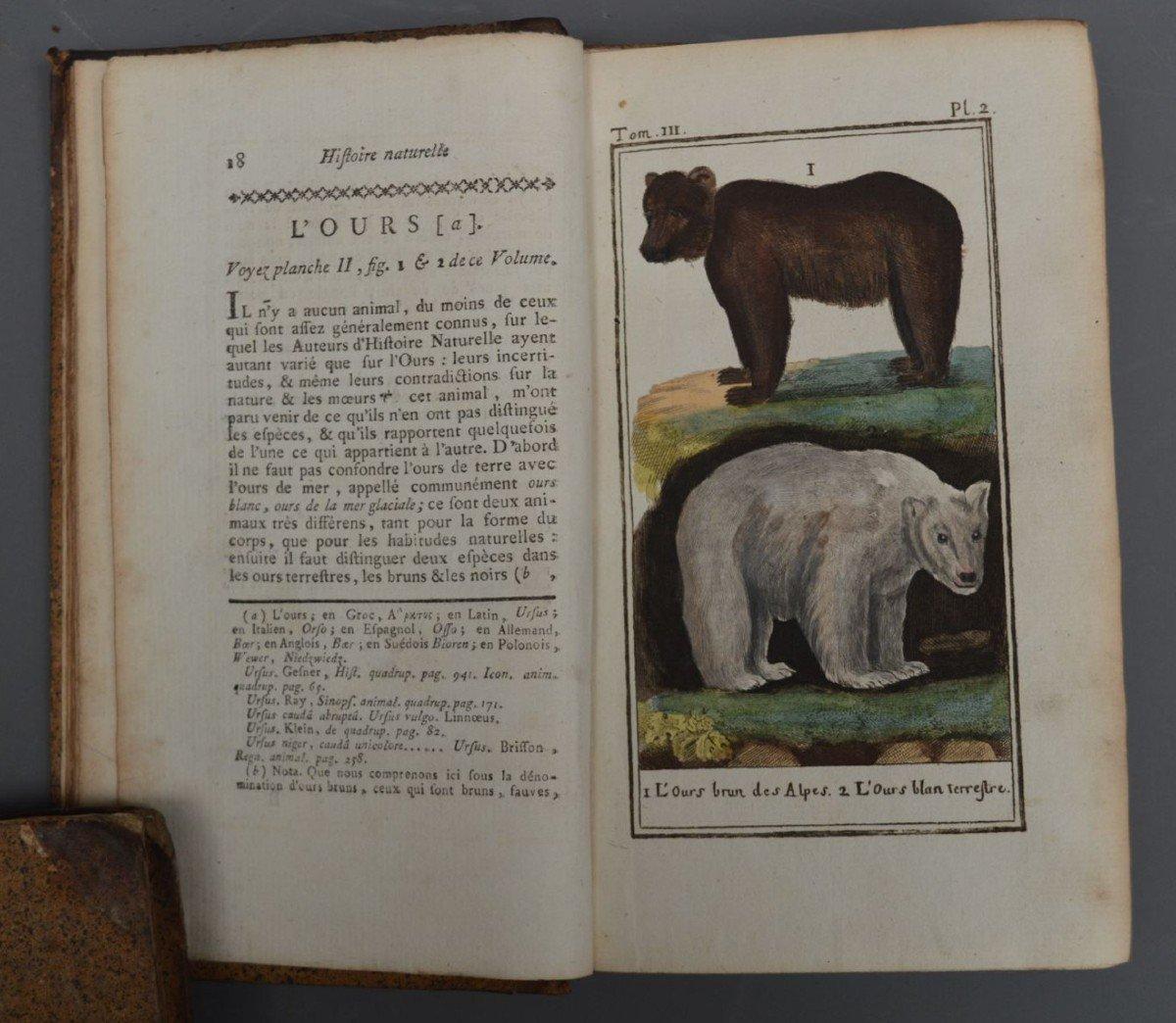 Collection De 44 Livres De Mr De Buffon, Oiseaux, Minéraux, Histoire Naturelle, Etc-photo-2