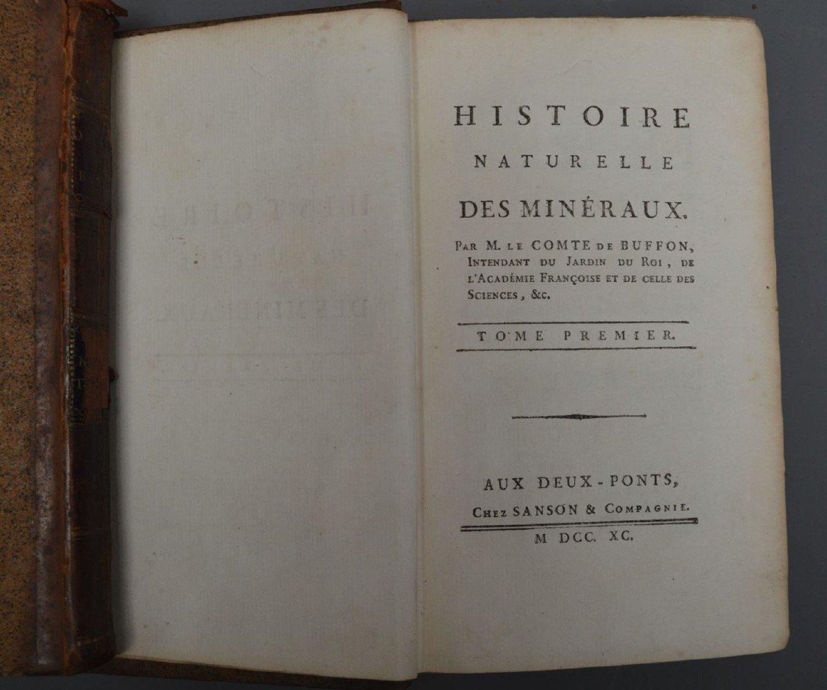 Collection De 44 Livres De Mr De Buffon, Oiseaux, Minéraux, Histoire Naturelle, Etc-photo-1