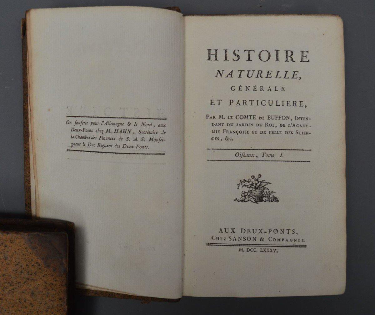 Collection De 44 Livres De Mr De Buffon, Oiseaux, Minéraux, Histoire Naturelle, Etc-photo-3