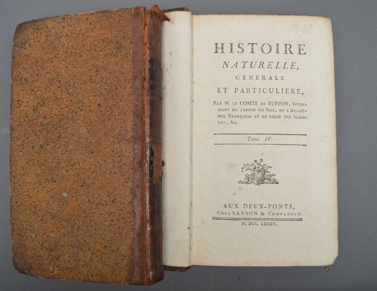 Collection De 44 Livres De Mr De Buffon, Oiseaux, Minéraux, Histoire Naturelle, Etc-photo-5
