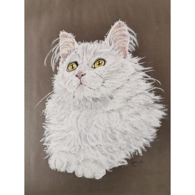 Portrait de chat par Seignolle