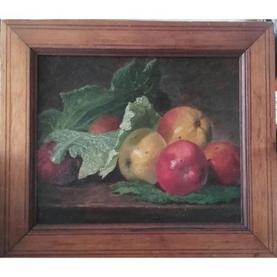 Still Life With Apples And Cabbage Leaf