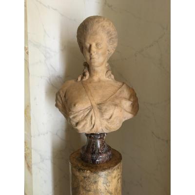 Terracotta Bust - XVIIIth