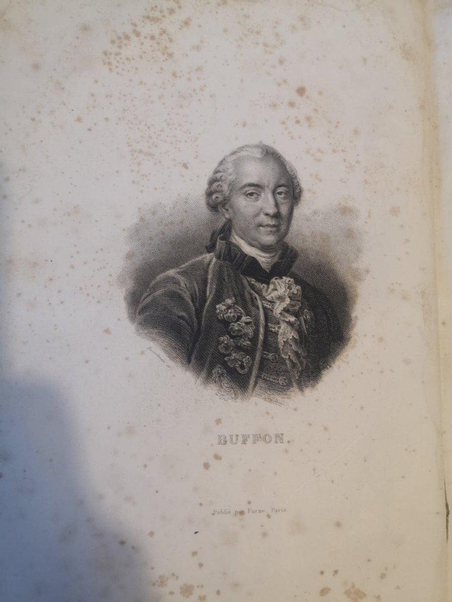 Oeuvres Complètes De Buffon- Imprimé par H. Fournier et Cie - 1840.-photo-1