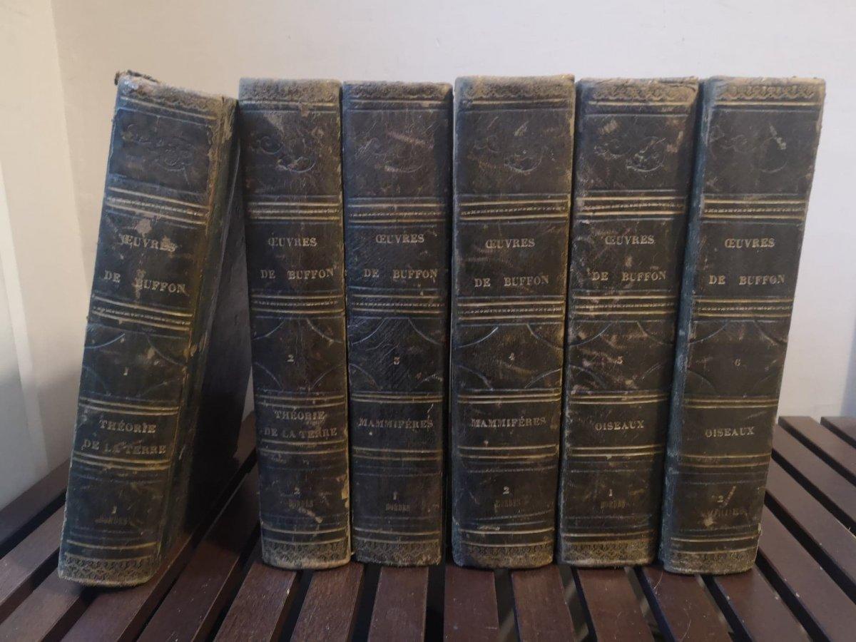 Oeuvres Complètes De Buffon- Imprimé par H. Fournier et Cie - 1840.