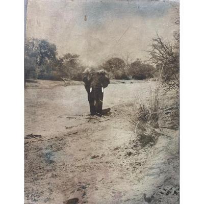 """Alfons ALT """" Menaçant """", 2003 Altotype sur papier marouflée 40 x 30 cm"""