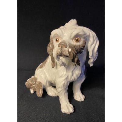 Cavalier King Charles Porcelain (after Meissen) Samson 19th