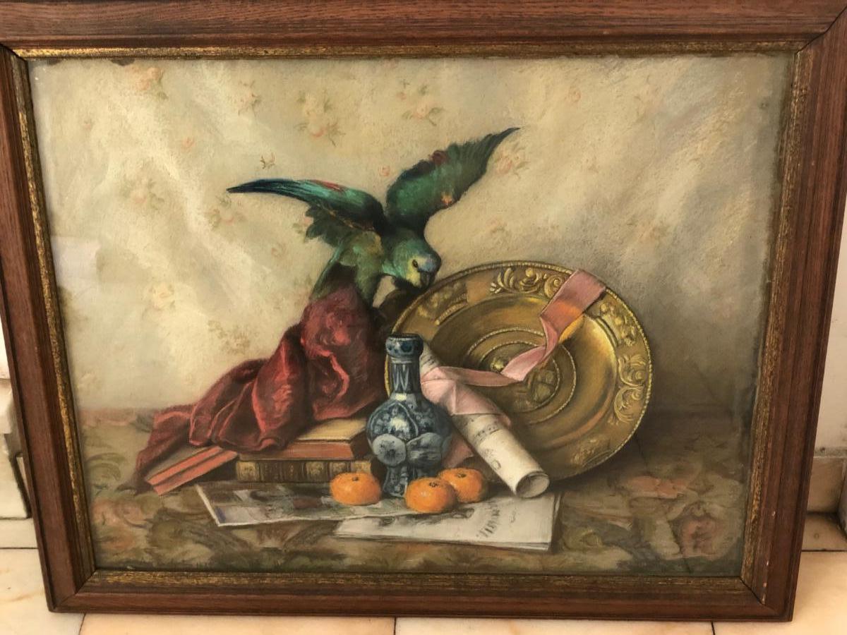 Antoine Flachat (actif Au XIXeme Siècle) Nature Morte Au Péroquet, 1879 Pastel Sur Toile