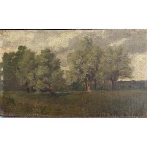 Ecole Impressionniste - Jeune Femme Sous Un Arbre, Circa 1890
