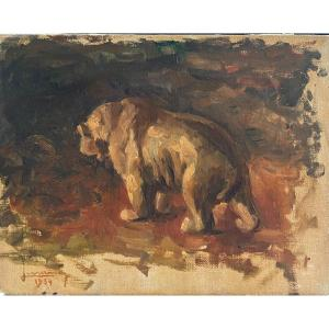Ecole Française - Peintre Animalier : Ours Brun, 1934 - Signature à Identifier