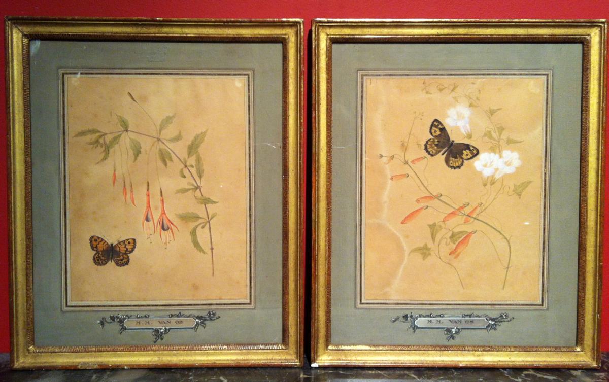 """Ancolies et Papillons"" de Maria Van Os (1779-1862)"
