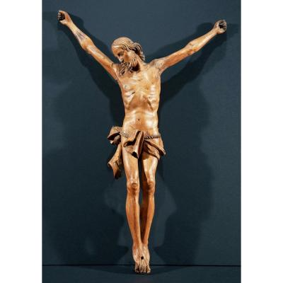 Christ In Carved Wood. Italy End Of XVIth Century