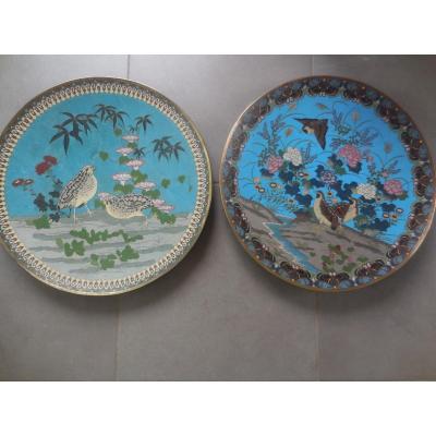 Paire De Grands Plats En Cloisonnés Japon XIXe  Diam.45cm B.e.