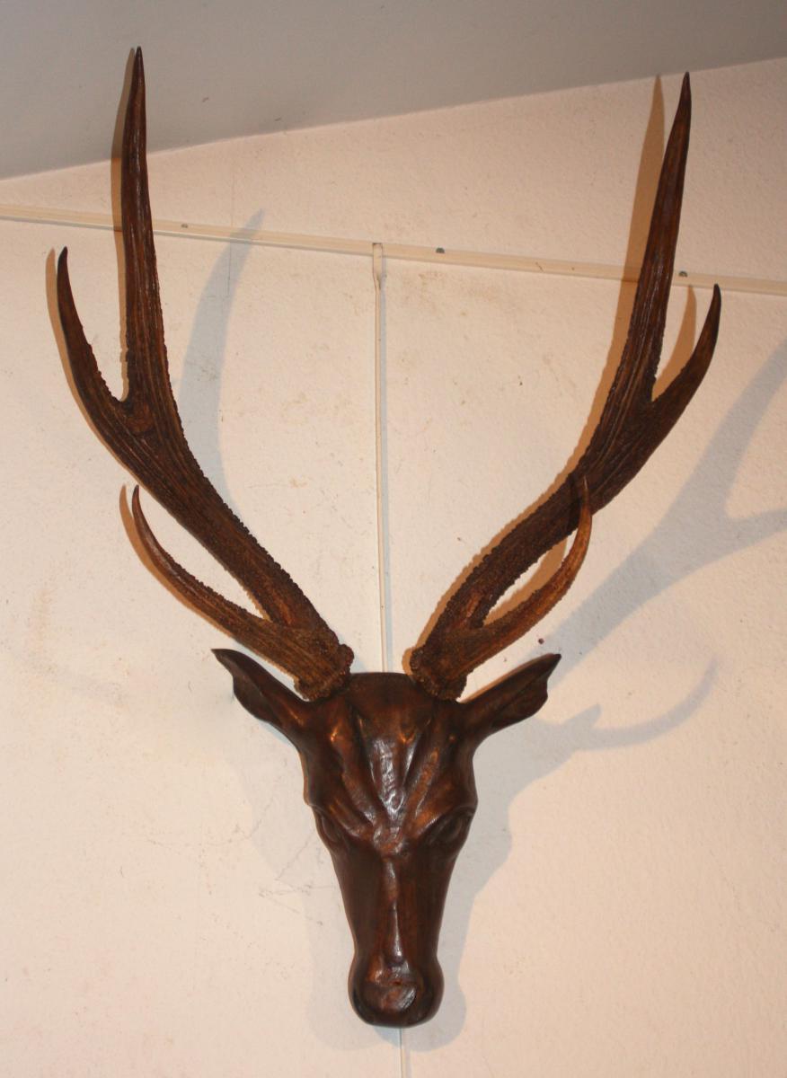 Troph en bois et cornes 19e si cle objets de d coration for Decoration 19eme siecle
